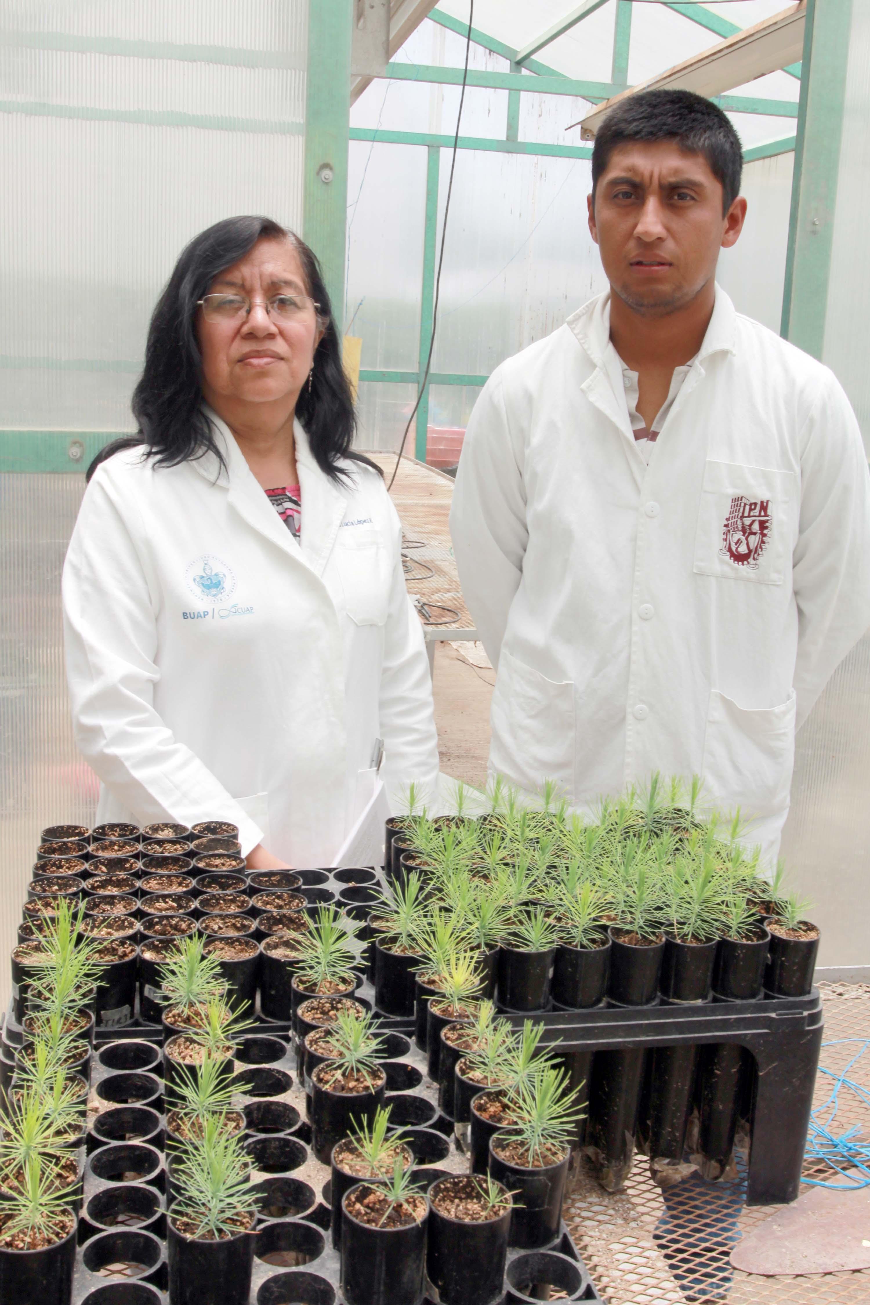Resultado de imagen para En la BUAP generan propuestas de biocontrol en plantas afectadas por hongos